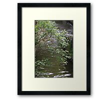 river in spring Framed Print