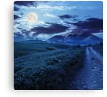 gravel road to high mountains at night Canvas Print