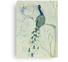 Dusky Peacock Canvas Print