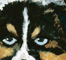 Black Tri Australian Shepherd Puppy  Sticker