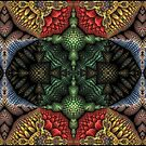 Altered Symmetry... by Roz Rayner-Rix