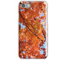 Pittsfield, Massachusetts iPhone Case/Skin