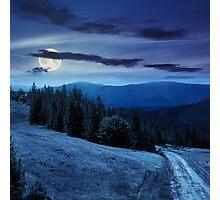 tree on hillside path through  meadowon hillside at night Photographic Print