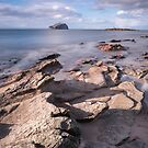Auldhame Edges by Christopher Cullen