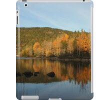 Acadia National Park, Maine iPad Case/Skin