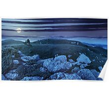trees on hillside among huge boulders at night Poster