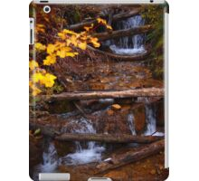 Fall flowing iPad Case/Skin
