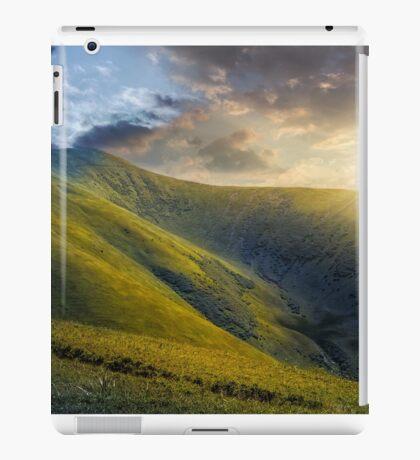 hill side meadow in summer iPad Case/Skin