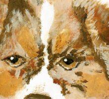 Red Merle Australian Shepherd Puppy Sticker