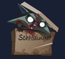 Schrödinger's Cat Solution by d4rkl1gh7