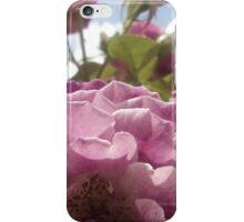 Amethyst Roses iPhone Case/Skin
