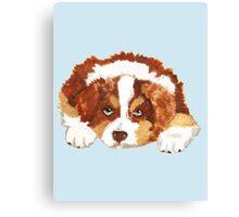Red Tri Australian Shepherd Puppy Canvas Print