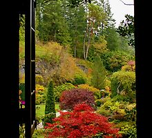 Window on Butchart Gardens by AnnDixon
