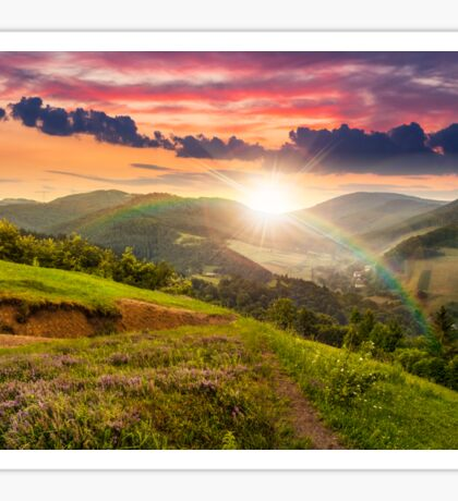 flowers on hillside meadow with forest at  sunset Sticker