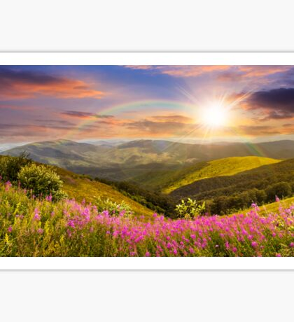 wild flowers on the mountain top at sunset Sticker