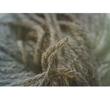 Wool Photographic Print