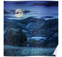 pine trees near meadow in mountains at night Poster