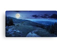 pine trees near valley in mountain at night Canvas Print