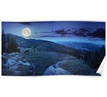 pine trees near valley in mountain at night Poster