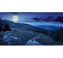 pine trees near valley in mountain at night Photographic Print
