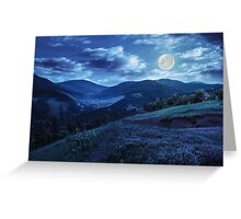 flowers on hillside meadow in mountain at night Greeting Card