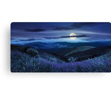 wild flowers on the mountain top at night Canvas Print