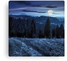 coniferous forest on a  mountain top at night Canvas Print