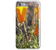Annual Blooms iPhone Case/Skin