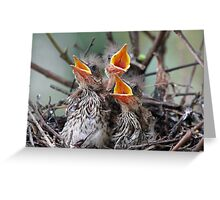 Hurry up mom or dad we are hungry! Greeting Card