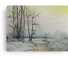 Serene Winter Scene Metal Print