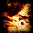 I Set the Sky on Fire by Stephanie Bynum