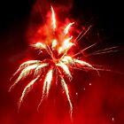 Firework series 3 by missmoneypenny