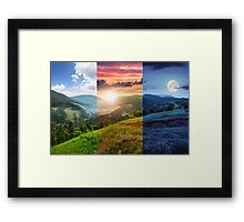 flowers on hillside meadow with forest in mountain Framed Print