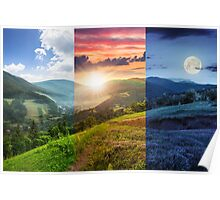 flowers on hillside meadow with forest in mountain Poster