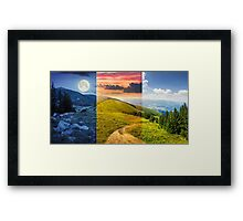 pine trees near valley in mountain Framed Print