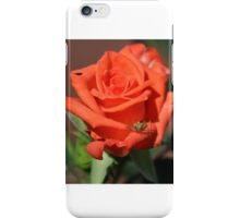 THE CRICKET AND THE ROSE iPhone Case/Skin