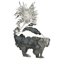 Skunk Painting  Photographic Print