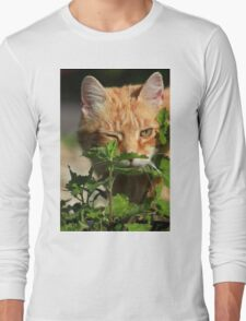 I found some catnip ;) Long Sleeve T-Shirt