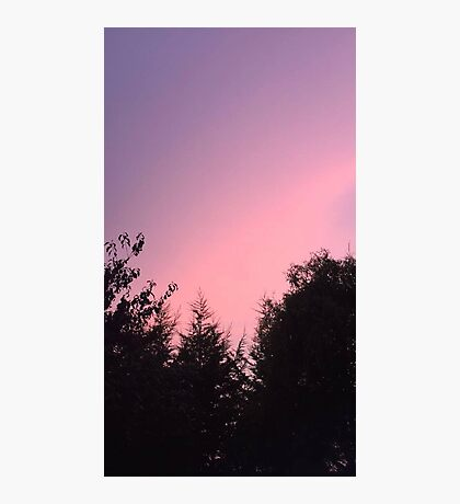 Pink Sky  Photographic Print