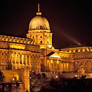 Buda Castle By Night by phil decocco