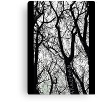 """Bare Naked Trees in Winter"" Canvas Print"