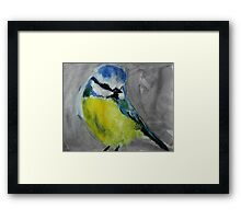 Wild English Garden Bird Blue Tit Contemporary Acrylic Painting Framed Print