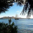 Mallorca / Majorca coast  by Tomasz-Olejnik