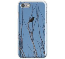 Small Songstress iPhone Case/Skin