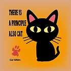 CAT PRINCIPLE by BATKEI