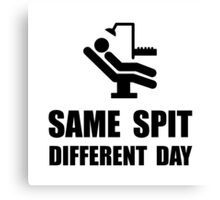 Same Spit Different Day Canvas Print