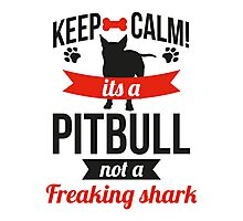 Keep calm its a pitbull not a freaking shark Photographic Print