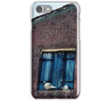 Pigeon Roost iPhone Case/Skin