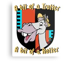 Mr. Toad's friend Cyril: a bit of a trotter, a bit of a rotter Metal Print