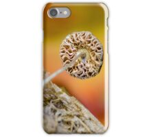 last day of summer iPhone Case/Skin